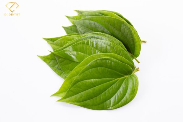 vì sao ăn trầu lại chắc răng, ăn trầu chắc răng, tại sao ăn trầu chắc răng, ăn trầu có tốt cho răng không, tại sao ăn trầu lại tốt cho răng